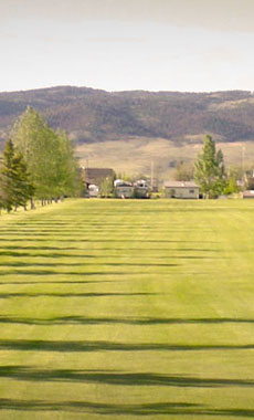 Golfing in Montana and Yellowstone National Park