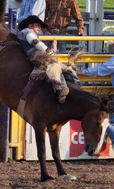 Rodeos in Montana and Yellowstone National Park